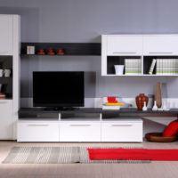 Velký přehled obývacích stěn do každého obýváku