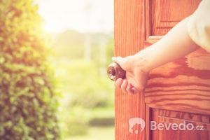 dvere_drevenedvere_vstupnidvere
