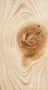 vady_vadydreva_suky_drevo